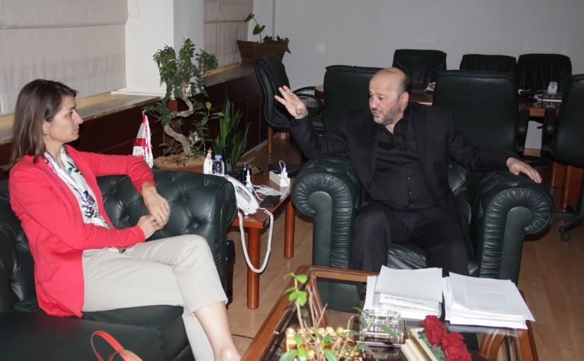 Minister Melhem Riachi meets European Ambassador