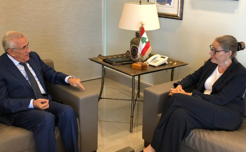 Former President Michel Sleiman Meets Acting Special Coordinator for Lebanon Pernille Dahler Kardel