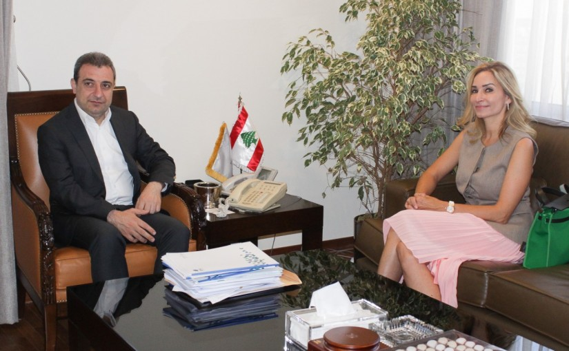 Minister Wael abou Faour meets Swiss Ambassador
