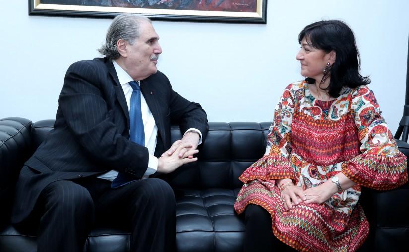 Minister Selim Jreysati Meets Mme Dorothee Le Fraper du Hellen