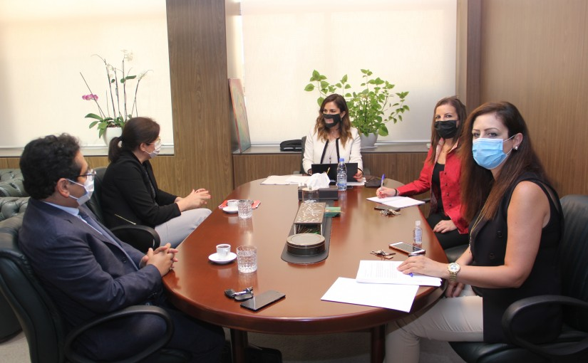 Minister Manal Abdel Samad meets a Delegation from UNDP