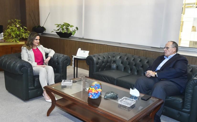 Minister Manal Abdel Samad meets Mr Sadek el Sabah