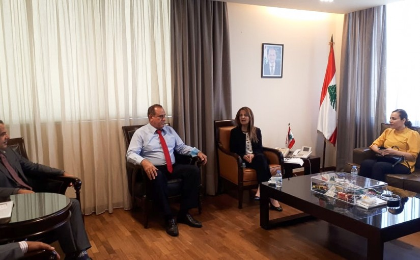 Minister Imad Heballah meets a Delegation from Syndicate of Pharmaceutical Manufacturers